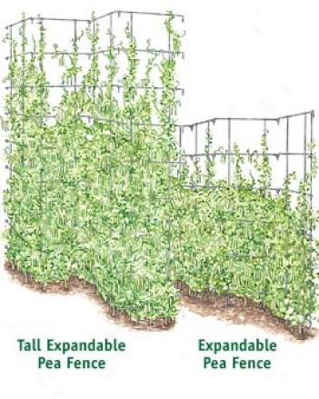 Expandable Pea Fence, 8 Panel