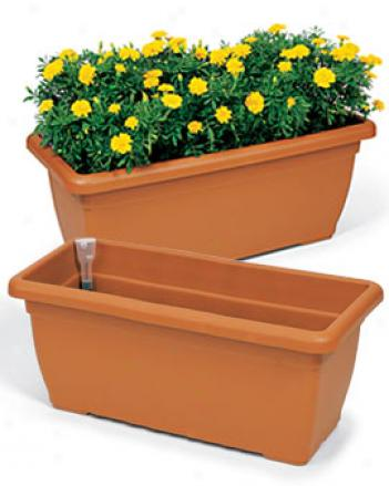 Fiore Trough Planter