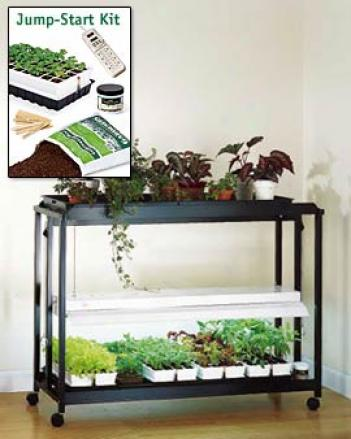Floor Model Sunlite® Garden With Jump-start Kit