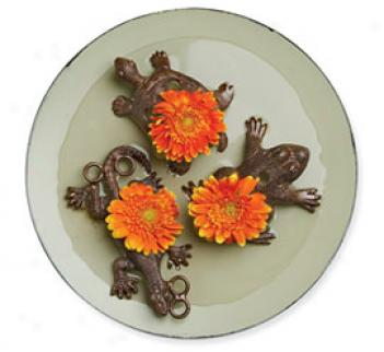 Flower Frogs, Set Of 3