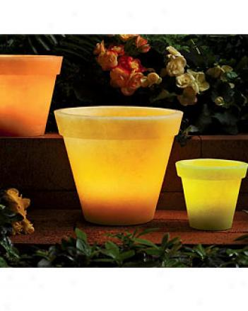 Flower Pot Luminraies, Set Of 3