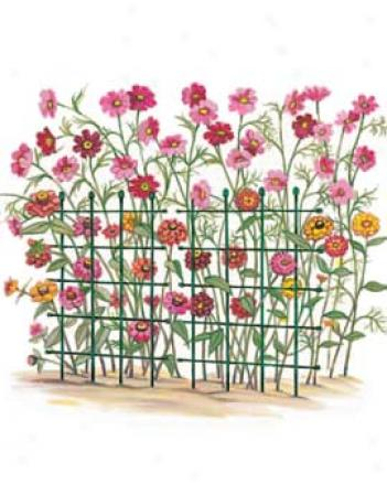 Flower Support Grids, Set Of 3