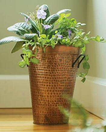 Frencch Flower Bucket Planter