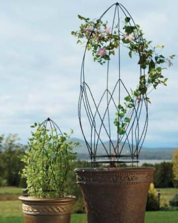French Topiary Trellis, Large