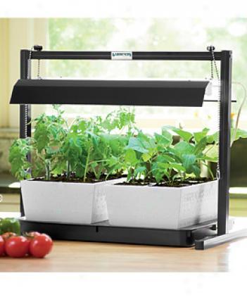 Garden Starter System