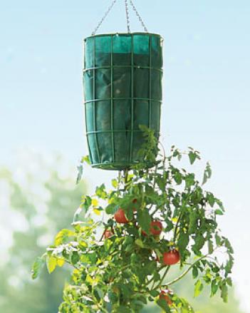 Gardener's Revolution#8482; Planter