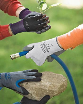 Glove Embarrass, 3 Pairs