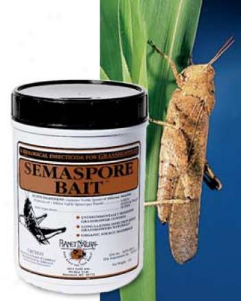 Grasshopper Control, 1 Lb.