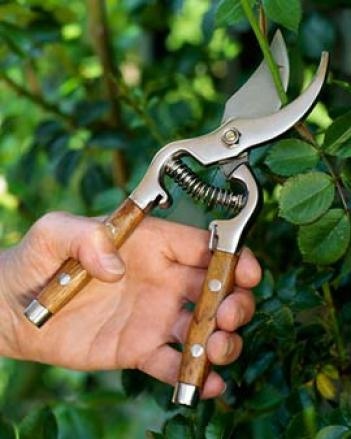 Heirloom Gzrden Pruners