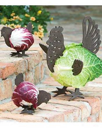 Hen & Chick Decorators