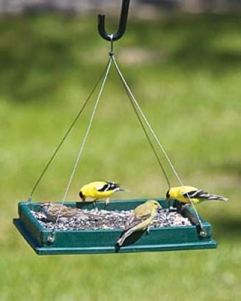 Hopper Birdfeeder