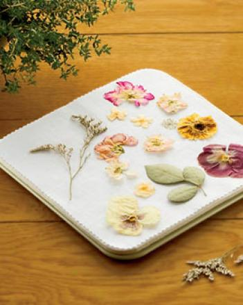 Large Microwave Flower Press