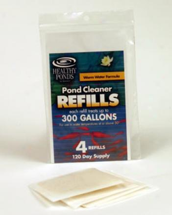 Lily Refills, Set Of 4