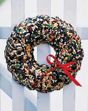 Merry Berry Seed Wreath