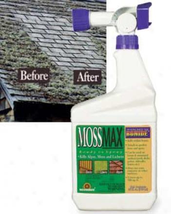 Moss Control Spray