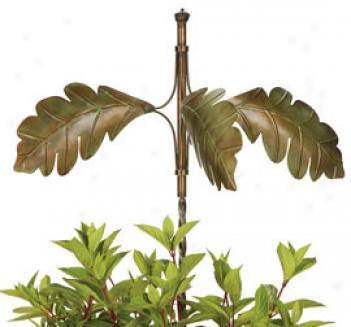 Oak Leaf Spinner
