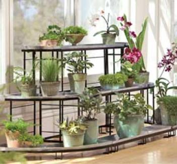 Plant Terrace Set, 3 Pcs, Green