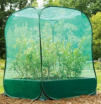Pop-up Net, Small