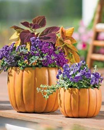 Pumpkin Planter, Large