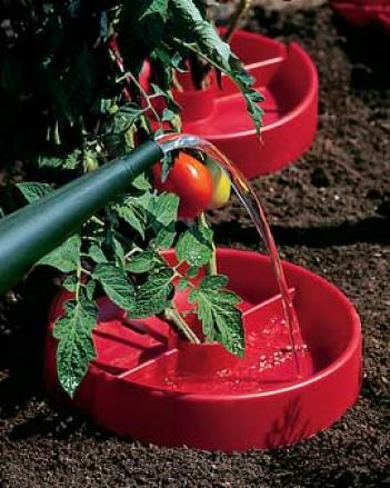 Red Tomato Savers, Set Of 3