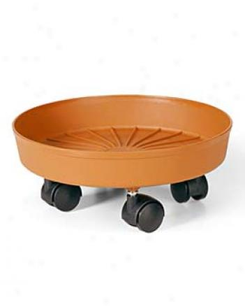 Rolling Saucer, Small