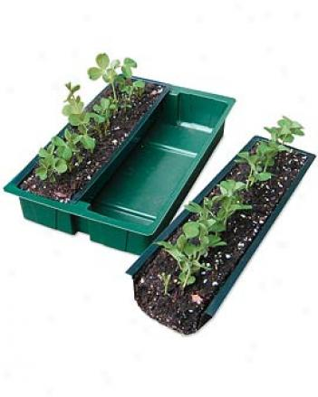Row Planters, Set Of 2