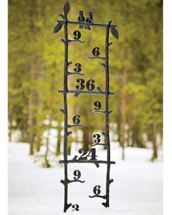 Rustic Snow Gauge