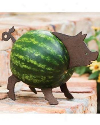 Squash Piggy