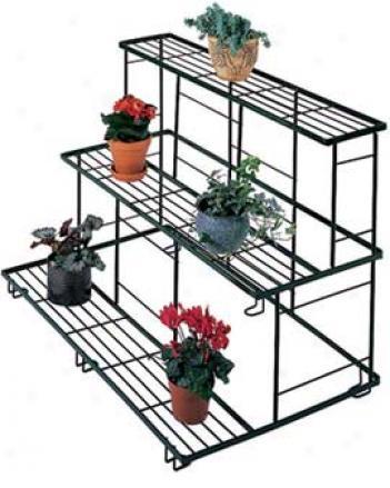 Straight Plant Terrace