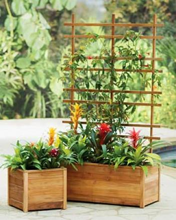Teak Self-watering Trough Planter
