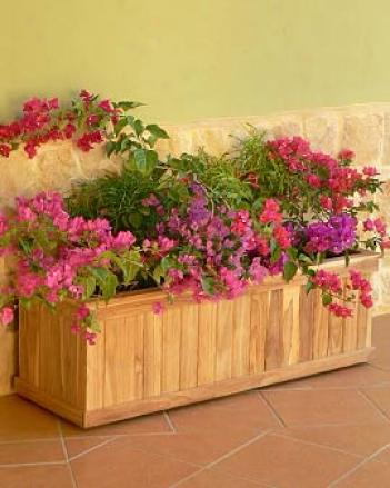 Teak Trough Planter, 36