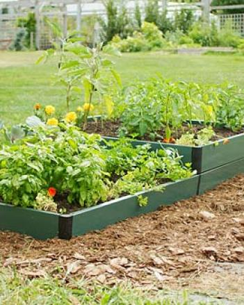 Two-tied Raised Bed