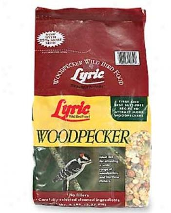Woodpecker Seed Be ~ed, 5 Lbs.