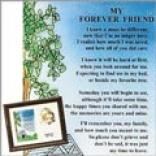 My Forever Friend-pet Memoroal Frame