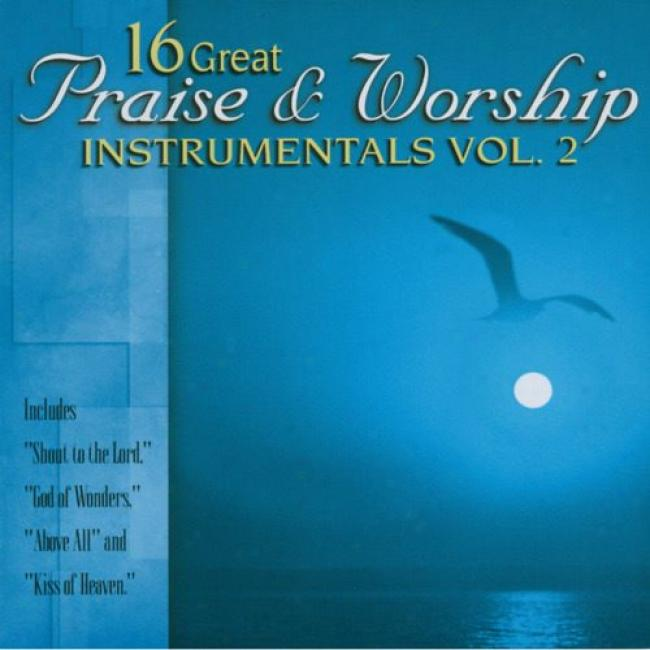 16 Great Praise & Idolize Instrumentals, Vol.2