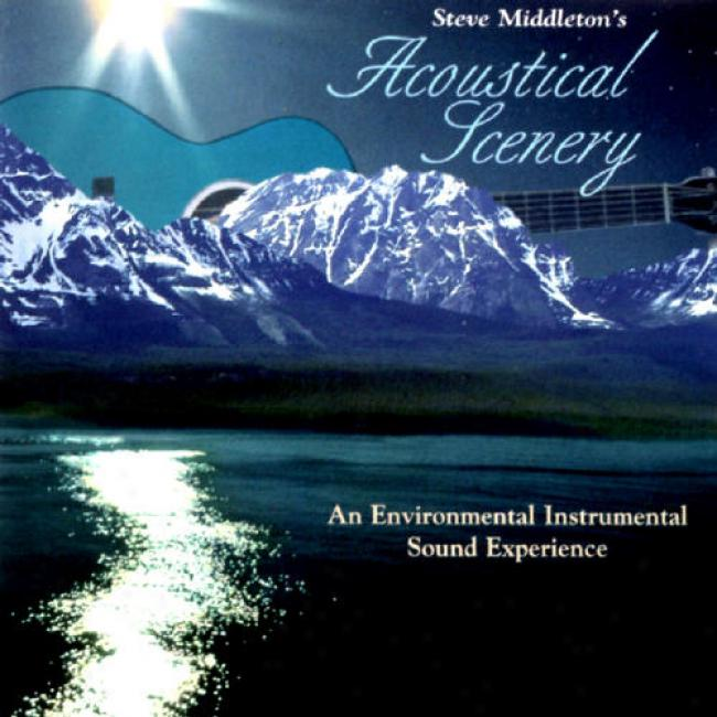 Acoustical Scenery: An Environmental Instrumental Soind Experience