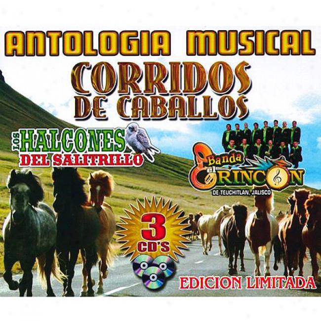 Antologia Musicak: Corridos De Caballeros (limited Edition) (3cd)