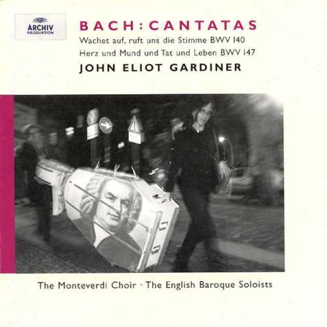 Bach: Cantatas - 27th Sunday After Trinity/the Visitation Of Mary