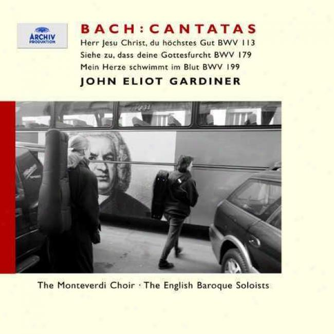 Bach: Cantatas - Trinity Ii (the 14th Sunday After Trinity)