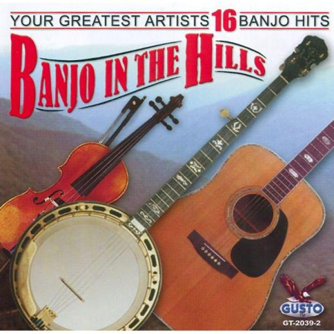 Banjo In The Hill:s Your Greatest Artists 16 Banjo Hits