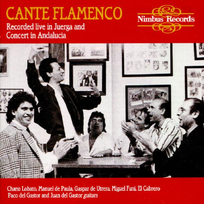 Cante Flamencco: Recorded Live In Juerga And Concert In Andalucia