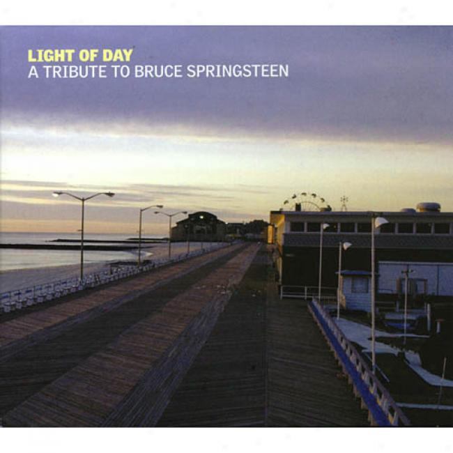 Light Of Day: A Tax To Bruce Springsteen (2cd) (digi-pak)