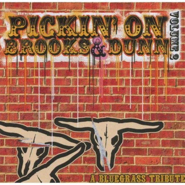 Pickin' On Brooks & Dunn, Vol.2: A Bluegrass Tribute