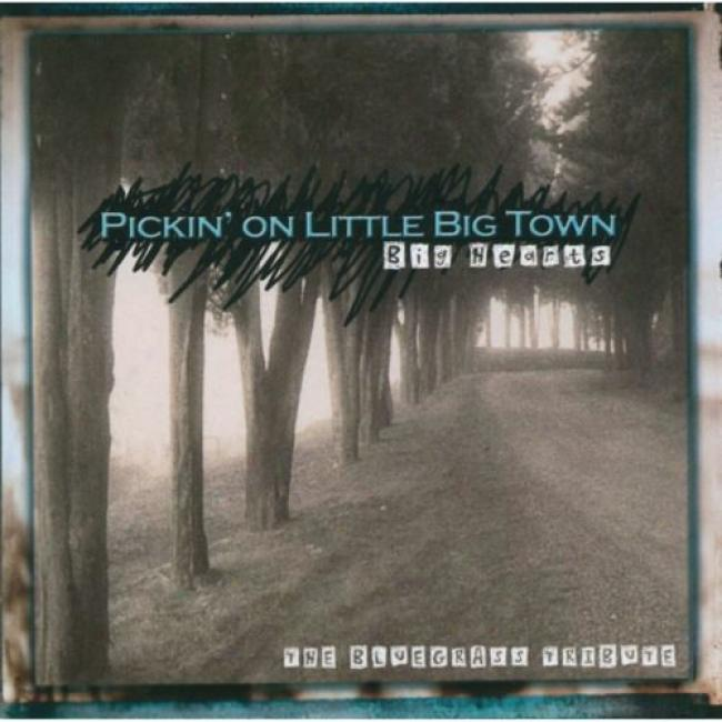 Pockin' On Little Big Town: The Bluegrass Tribute