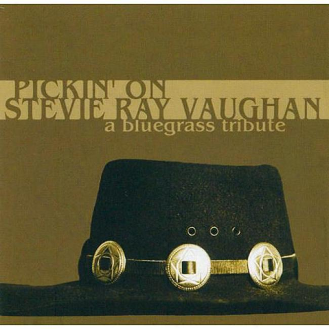 Pickin' On Stevie Rat Vaughan: A Blurgrass Tribute