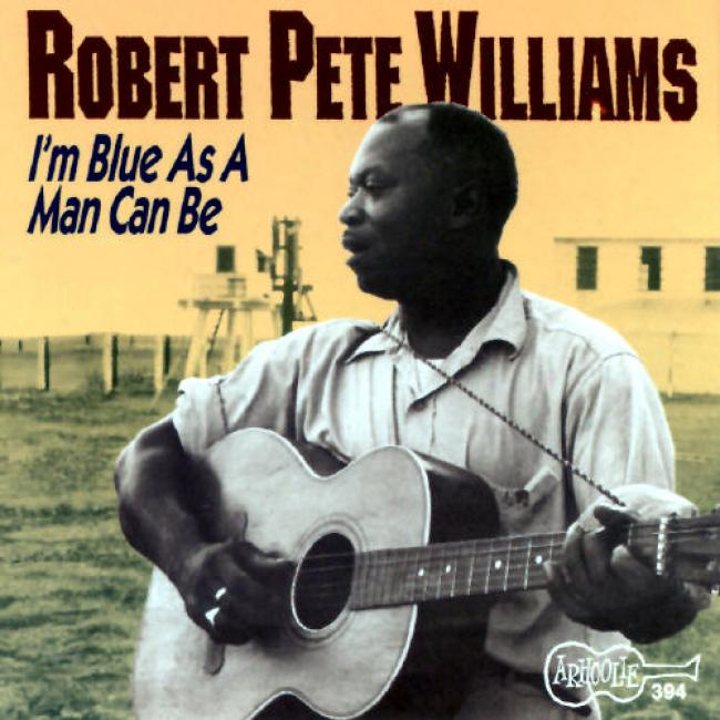 Robert Pete Williams, Vol.1: I'm Blue As A Mankind Can Be