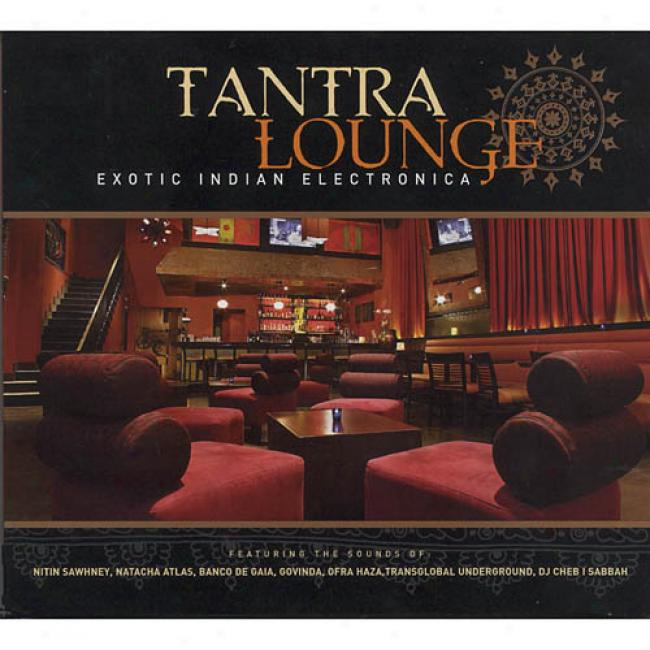 Tantra Lounge: Exotic Indian Electronica (digi-pak)