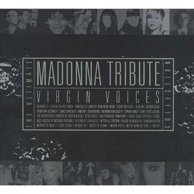 Virgin Voices: A Madonna Tribute - The Ultimate Collection (2cd)