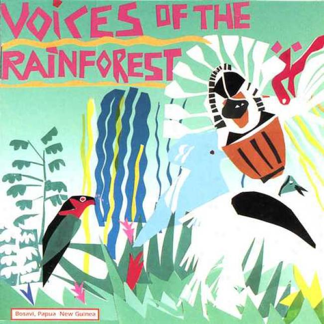 Voices Of The Rainforest - A Soundscape Of A Day In The Life Of The Kaluli People Of The Papua Guinea Rainforest