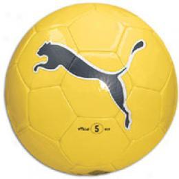 Puma Big Cat Ii Sb